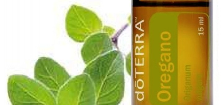 oregano-oil mlm